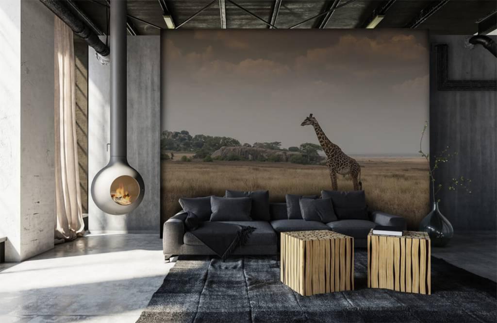 Dieren - Giraffe op een savanne - Slaapkamer 2