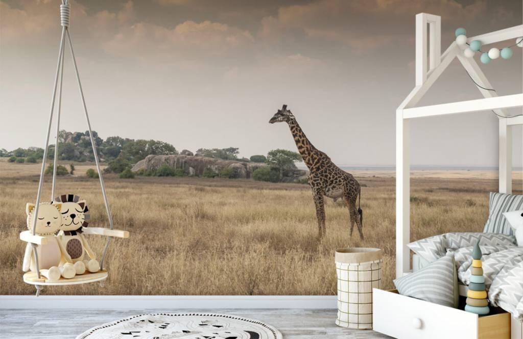 Dieren - Giraffe op een savanne - Slaapkamer 5