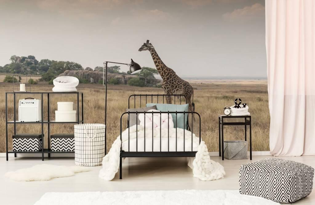 Dieren - Giraffe op een savanne - Slaapkamer 7