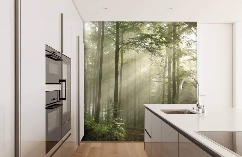 Bos behang - Groen bos in de mist - Slaapkamer 3