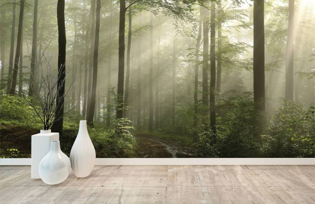 Bos behang - Groen bos in de mist - Slaapkamer 8