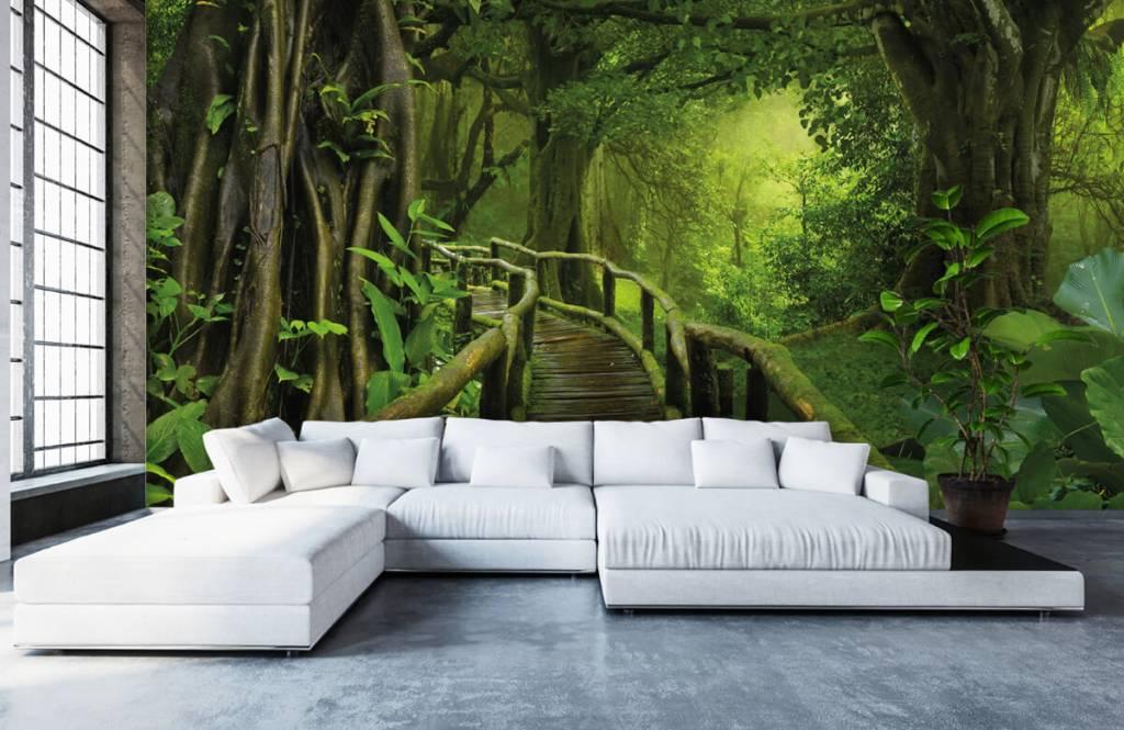 Bomen - Houten brug door een groene jungle - Slaapkamer 1
