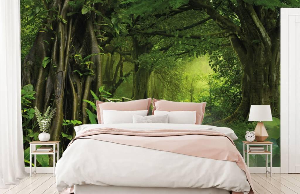Bomen - Houten brug door een groene jungle - Slaapkamer 2