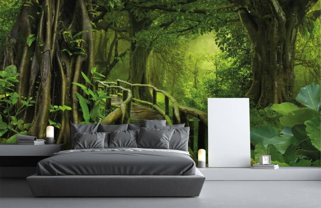 Bomen - Houten brug door een groene jungle - Slaapkamer 3
