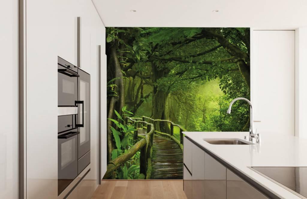 Bomen - Houten brug door een groene jungle - Slaapkamer 4