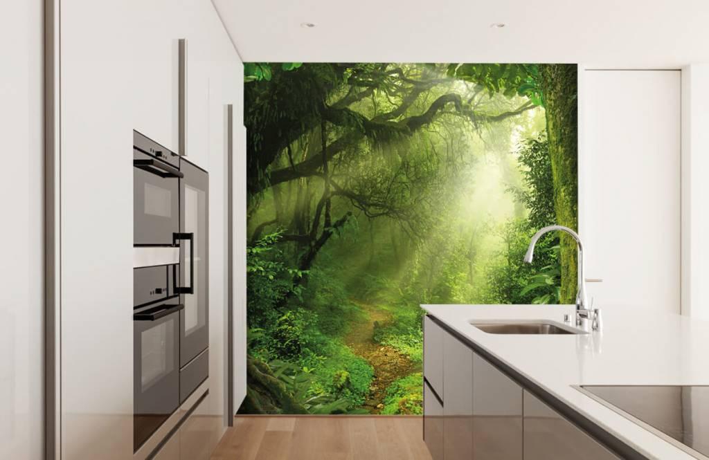 Bomen - Jungle met zonnestralen - Slaapkamer 4