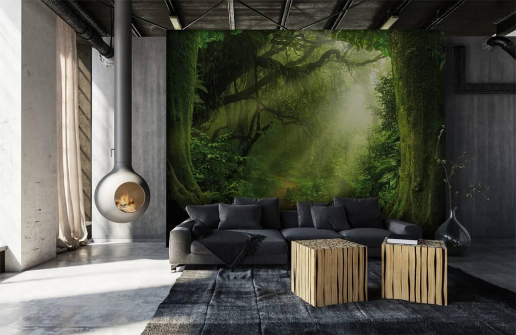 Bomen - Jungle met zonnestralen - Slaapkamer 7