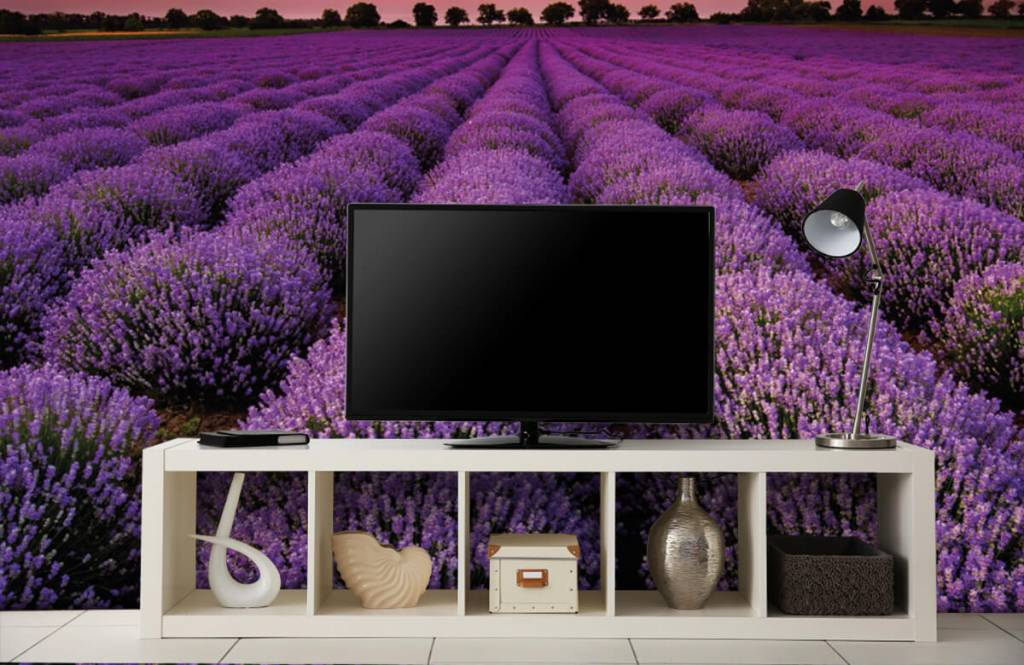 Bloemenvelden - Lavendel veld - Slaapkamer 4