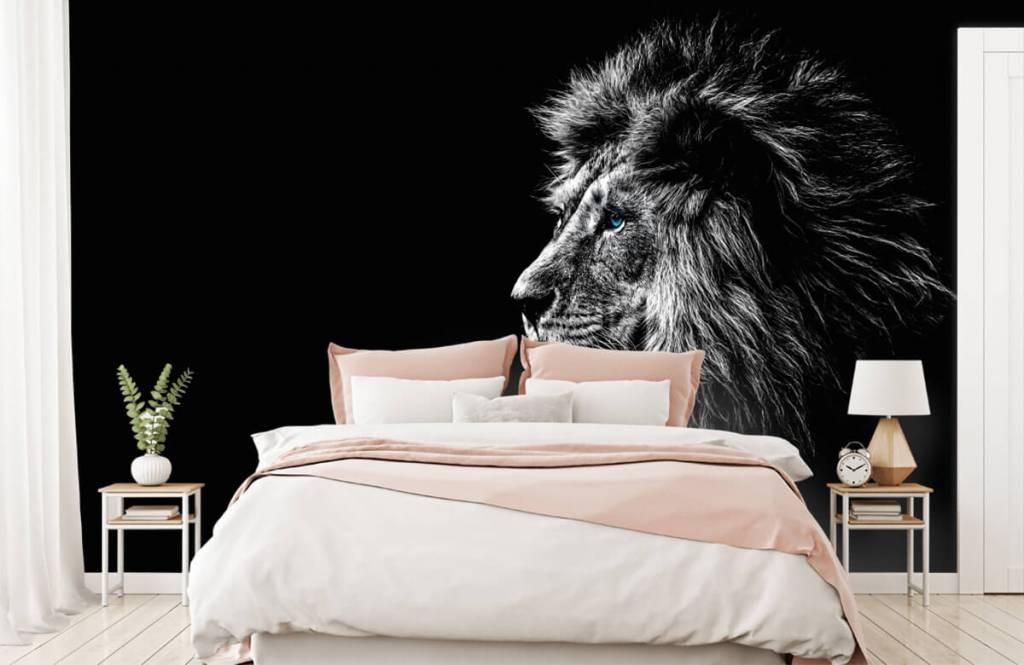 Safaridieren - Leeuw met blauwe ogen - Tienerkamer 2