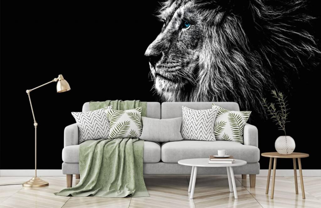 Safaridieren - Leeuw met blauwe ogen - Tienerkamer 7