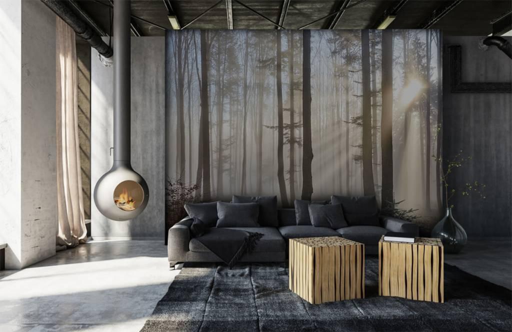 Bos behang - Mistig bos - Slaapkamer 6
