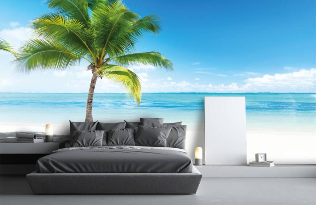 Palmbomen - Palmboom - Slaapkamer 3