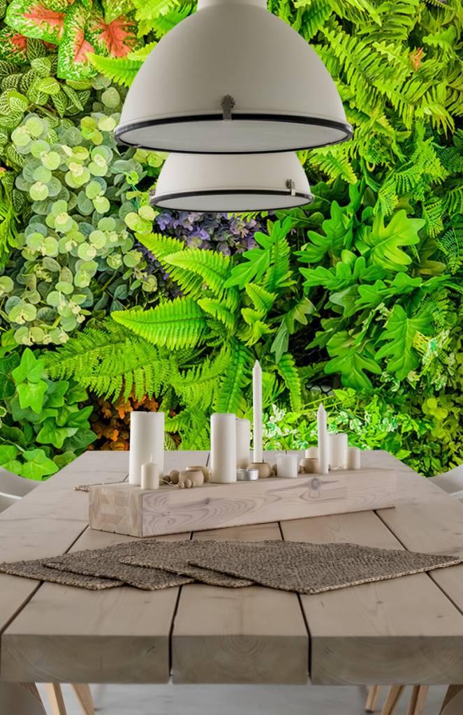 Bladeren - Planten mix - Showroom 4
