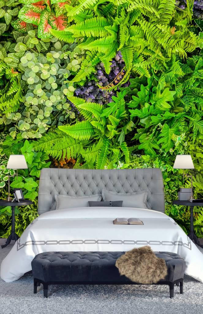 Bladeren - Planten mix - Showroom 6
