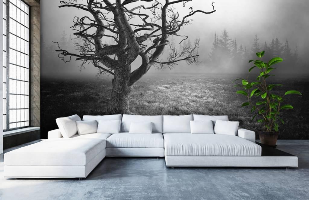 Zwart Wit behang - Sierlijke boom - Slaapkamer 1