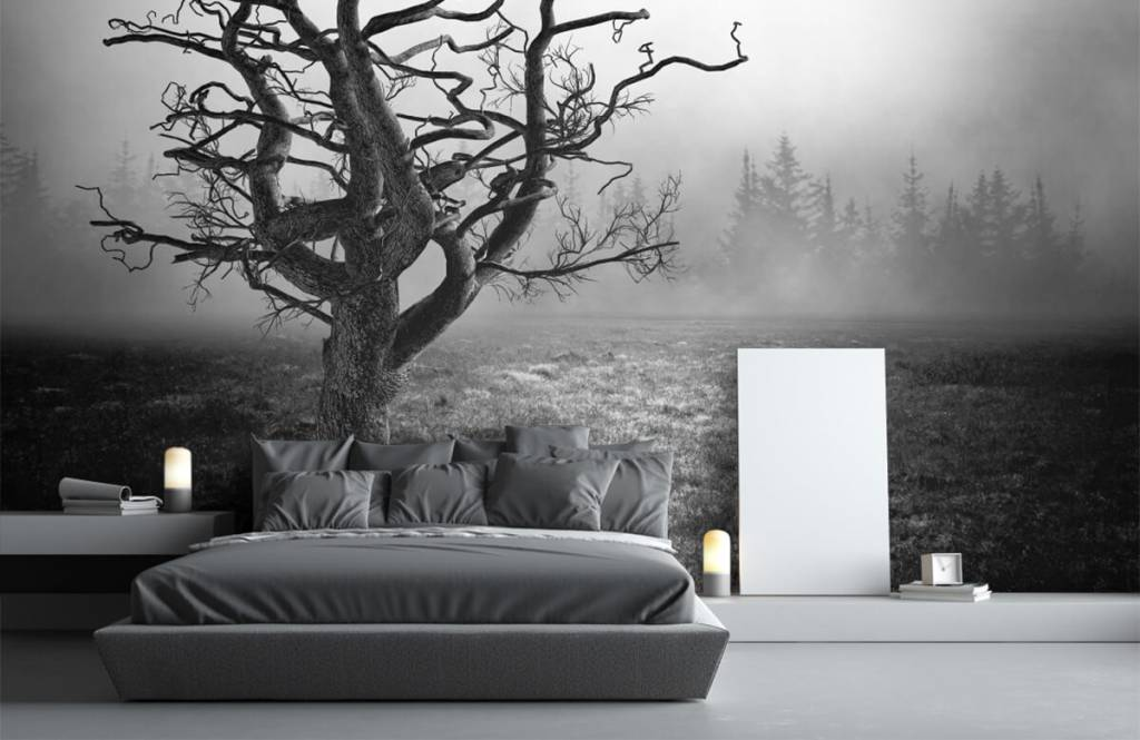 Zwart Wit behang - Sierlijke boom - Slaapkamer 3