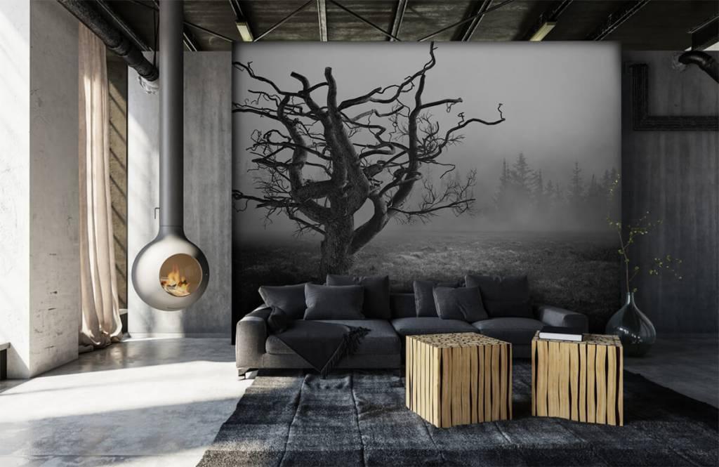 Zwart Wit behang - Sierlijke boom - Slaapkamer 6