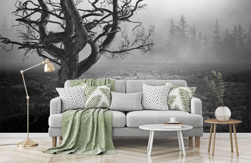 Zwart Wit behang - Sierlijke boom - Slaapkamer 7