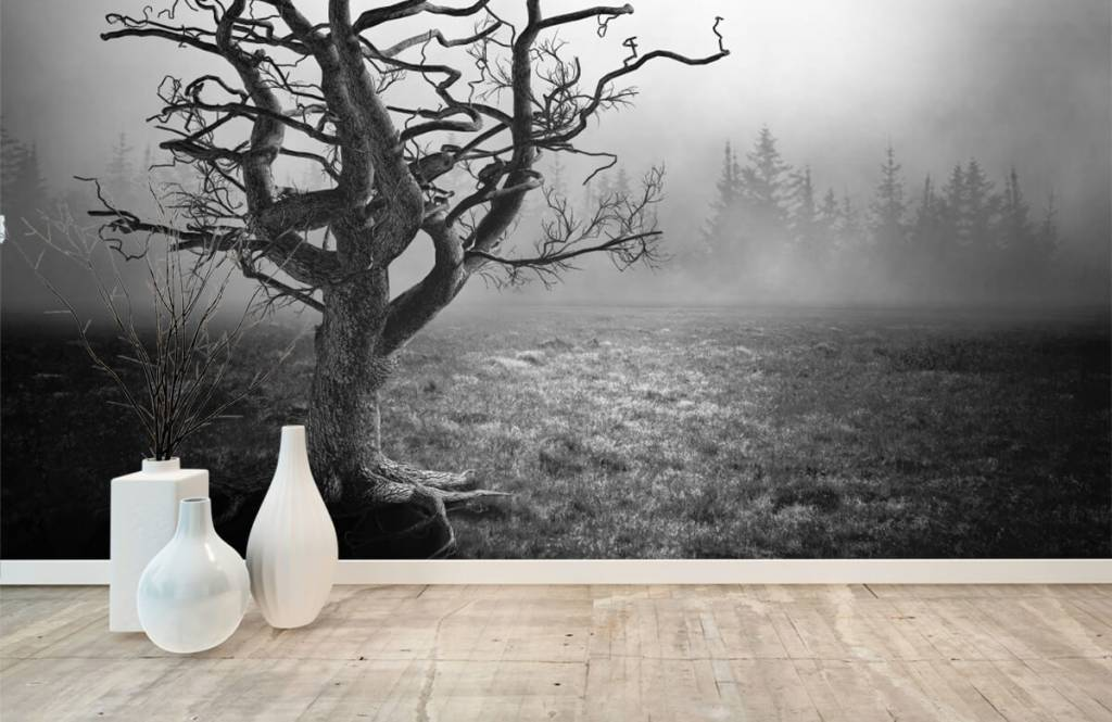 Zwart Wit behang - Sierlijke boom - Slaapkamer 8