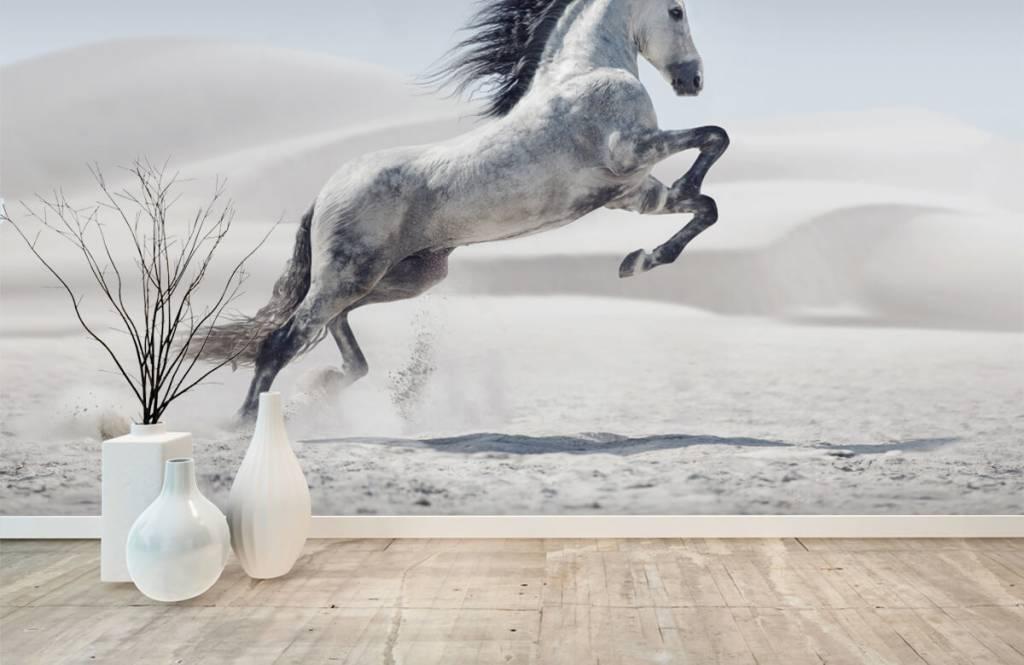 Paarden - Steigerend paard - Kinderkamer 2