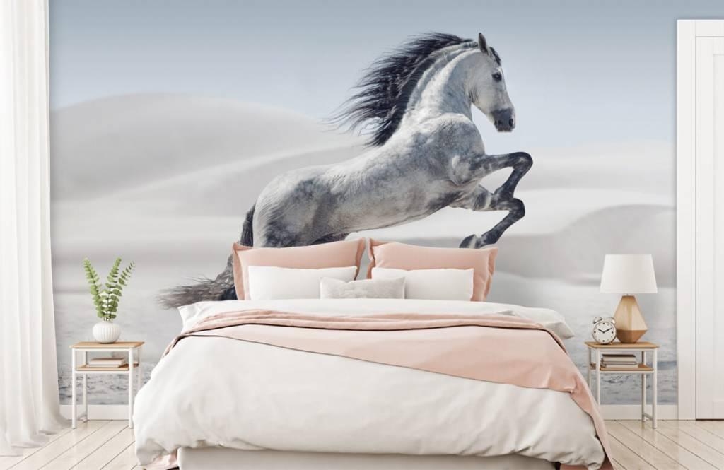 Paarden - Steigerend paard - Kinderkamer 3