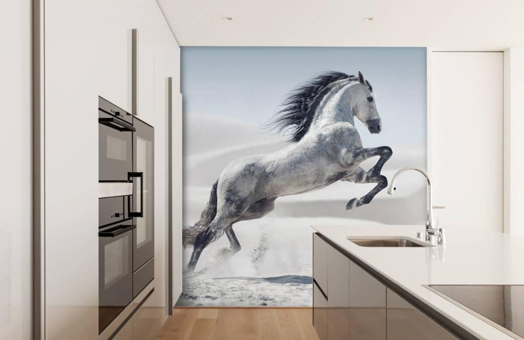 Paarden - Steigerend paard - Kinderkamer 5