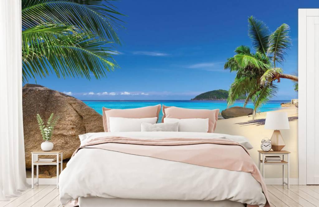 Stranden - Tropisch eiland - Hobbykamer 2