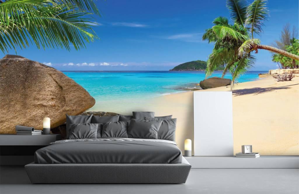 Stranden - Tropisch eiland - Hobbykamer 4