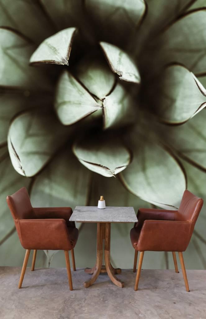 Overige - Vetplant - Woonkamer 2
