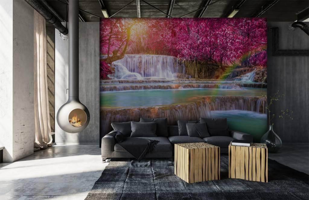 Watervallen - Watervallen in de jungle - Tienerkamer 6