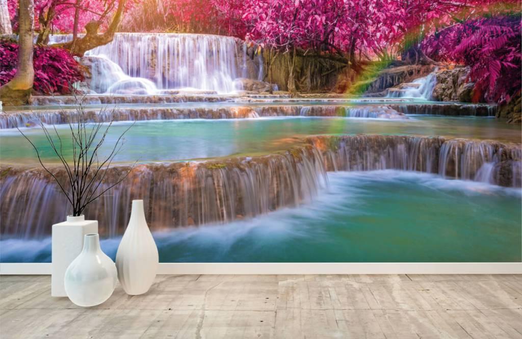 Watervallen - Watervallen in de jungle - Tienerkamer 8