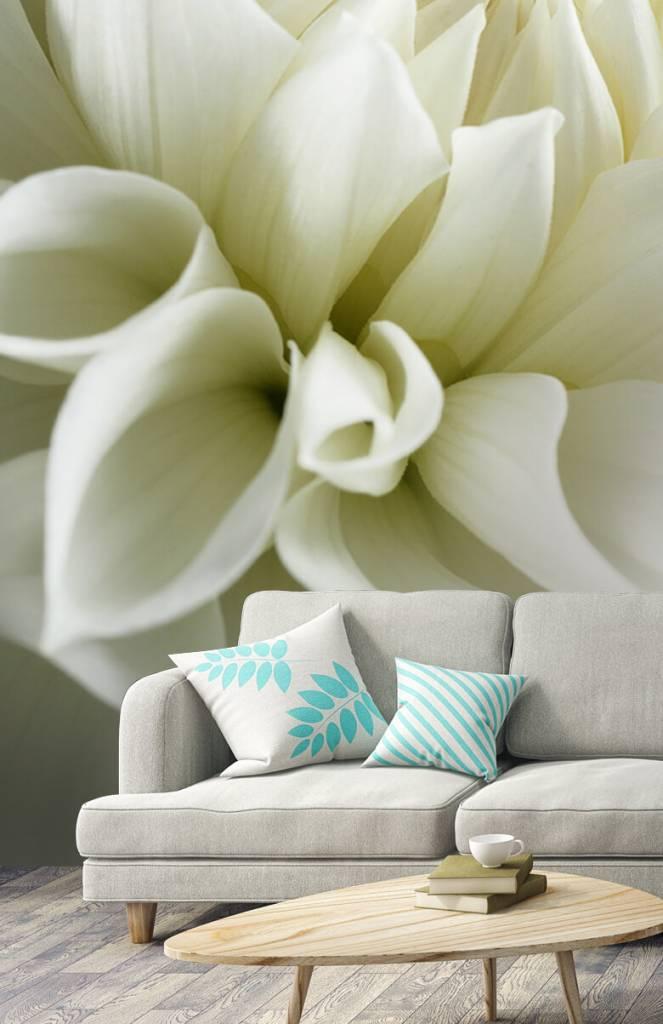 Overige - Witte bloem - Woonkamer 1