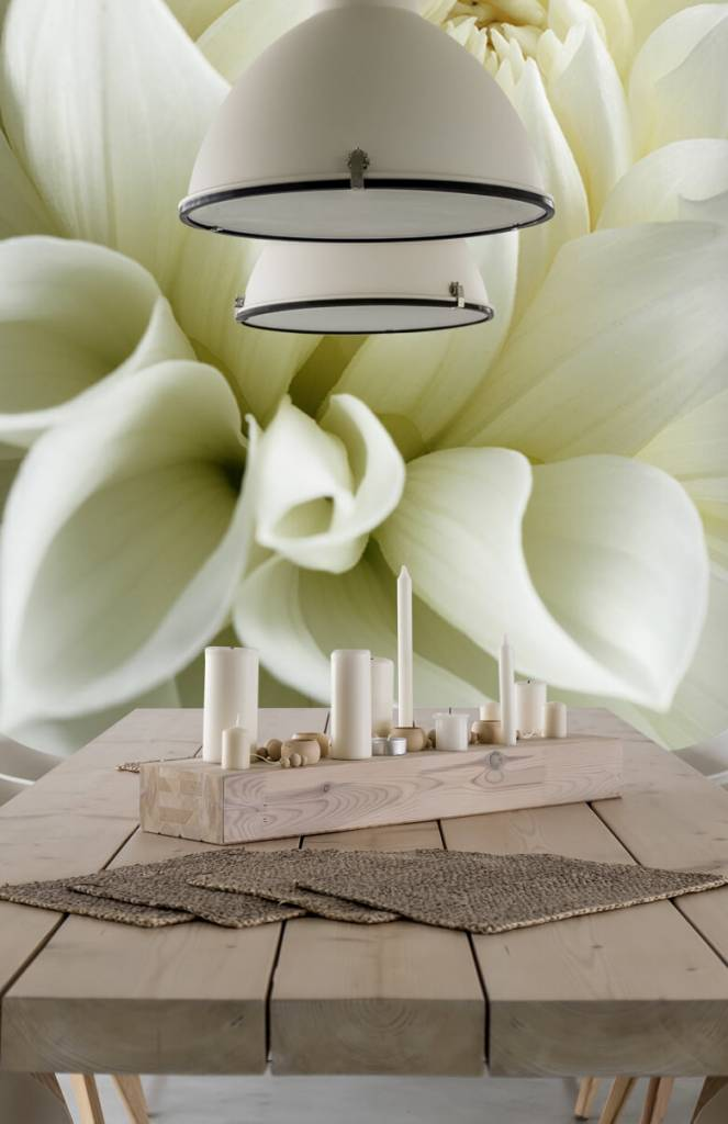 Overige - Witte bloem - Woonkamer 2