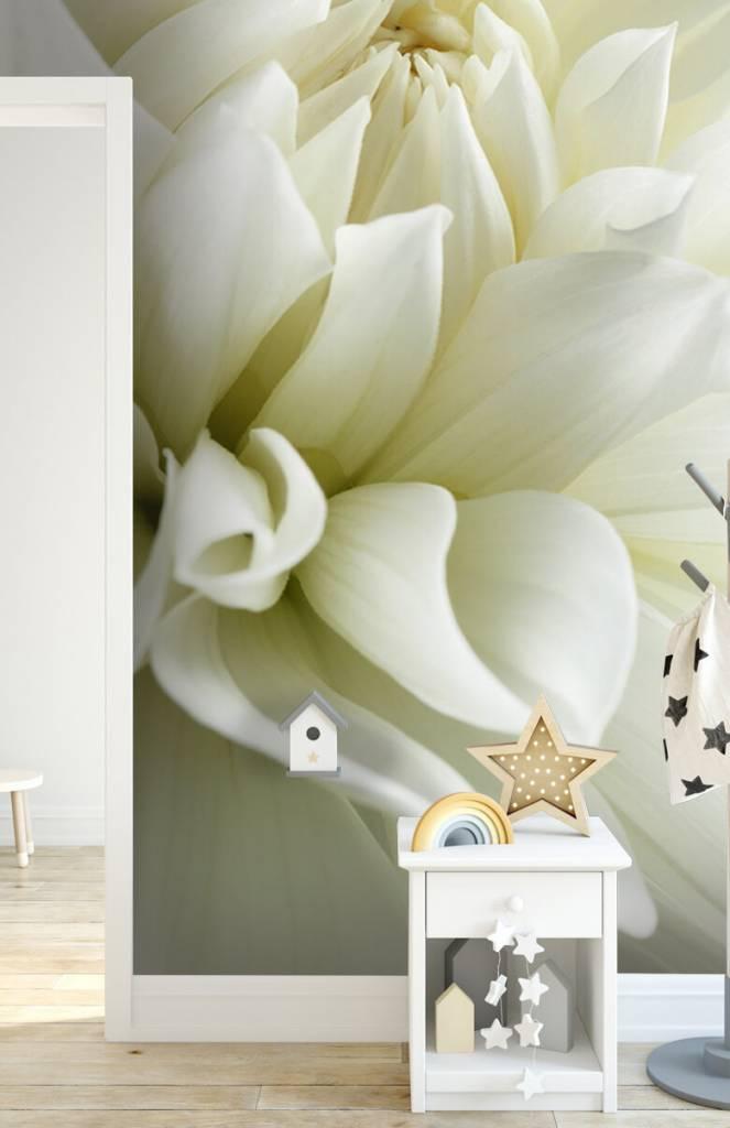 Overige - Witte bloem - Woonkamer 3