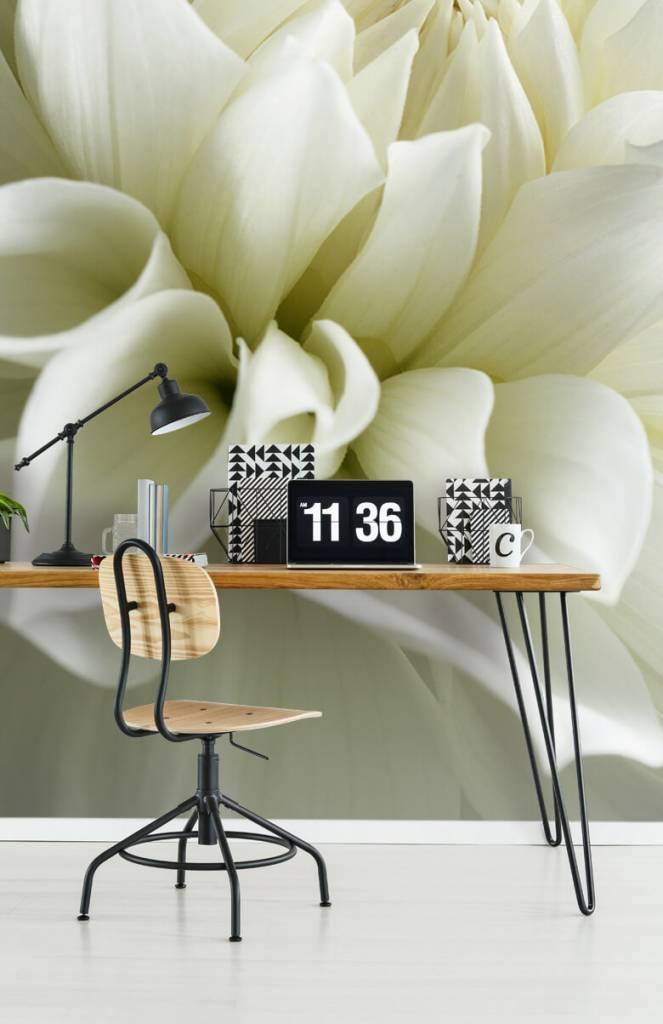 Overige - Witte bloem - Woonkamer 4