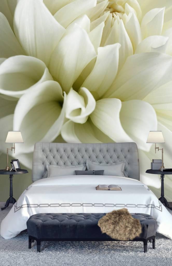 Overige - Witte bloem - Woonkamer 5
