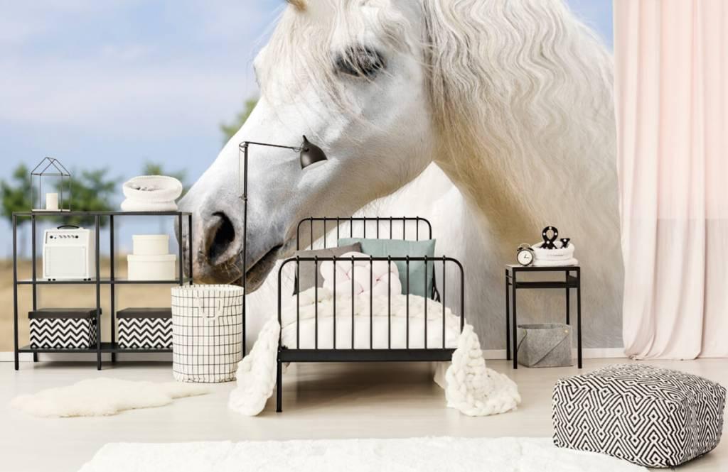 Paarden - Witte eenhoorn - Kinderkamer 2