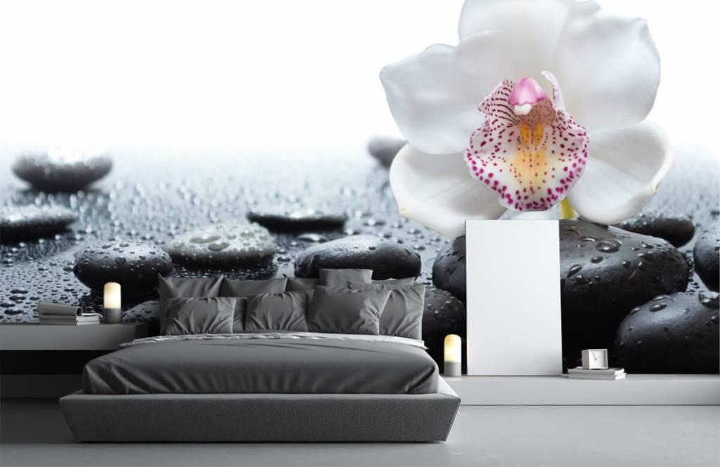Fotobehang Witte orchidee