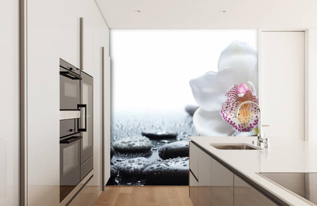 Overige - Witte orchidee - Ontvangstruimte 4