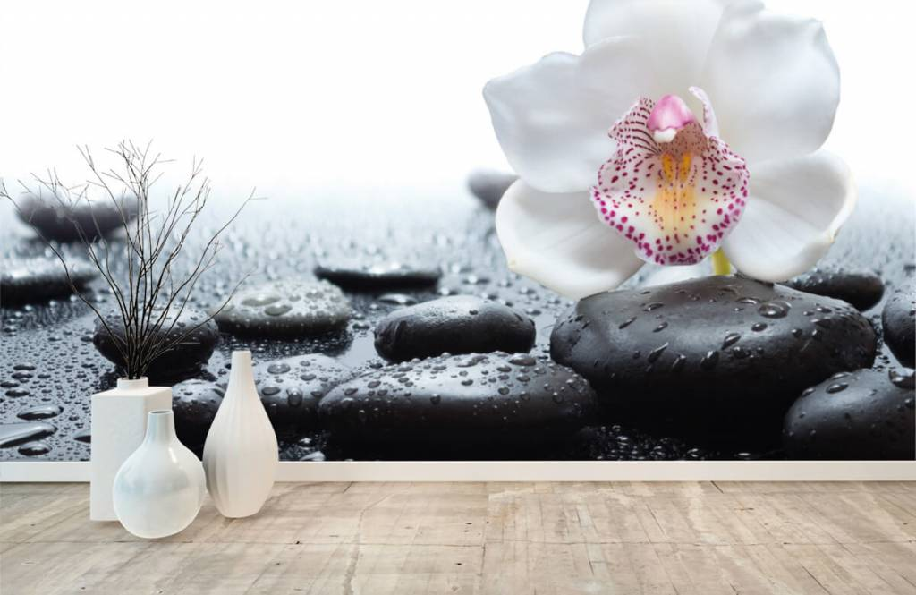 Overige - Witte orchidee - Ontvangstruimte 8