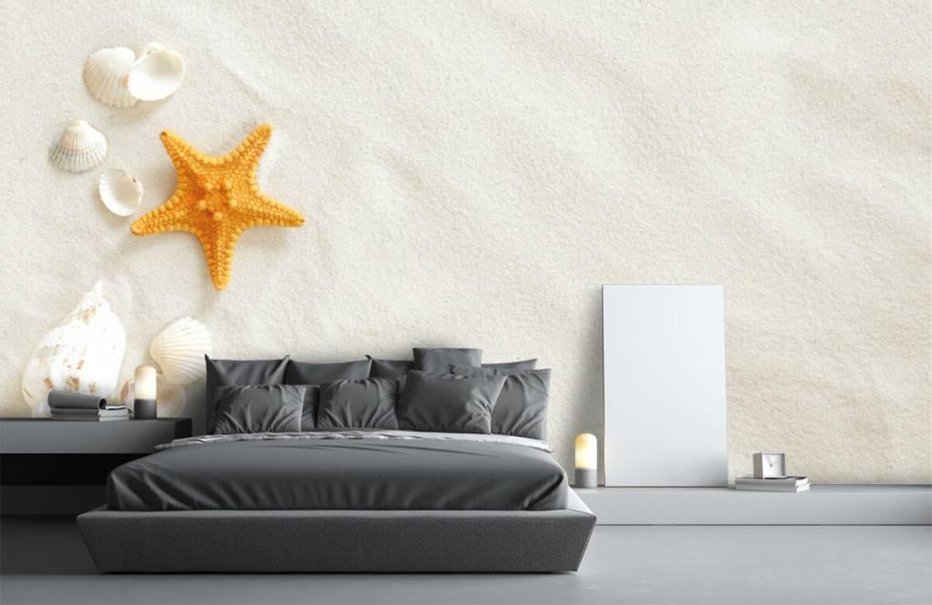 Stranden - Zeester op wit zand - Slaapkamer 3
