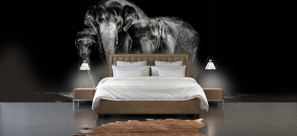 Olifanten - Zwart wit foto van olifanten - Woonkamer 3
