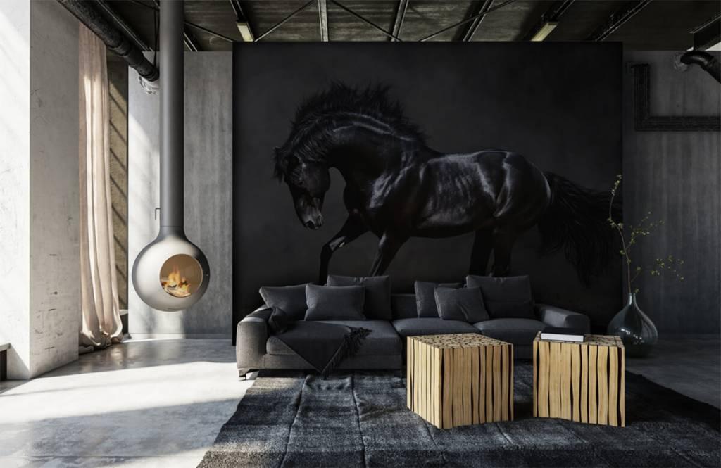 Paarden - Zwarte hengst - Kinderkamer 7