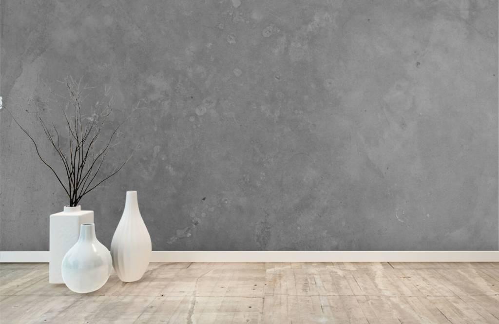 Betonlook behang - Grijs beton - Vergaderruimte 8