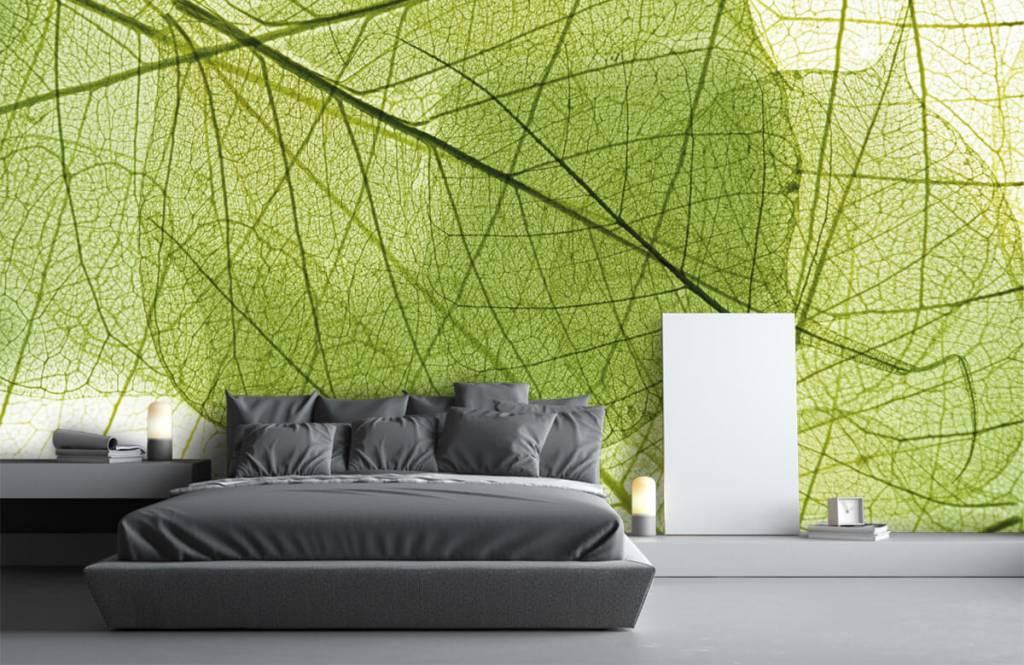 Bladeren - Groene bladeren - Slaapkamer 1