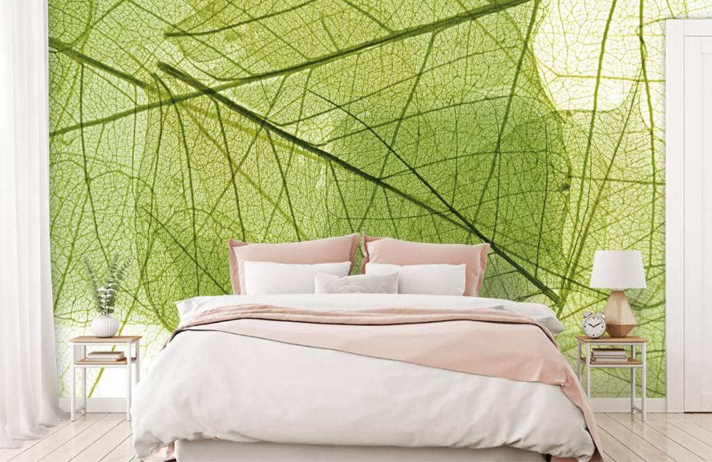 Bladeren - Groene bladeren - Slaapkamer 2