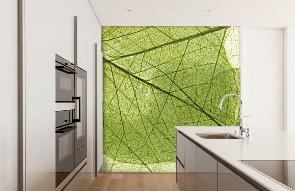 Bladeren - Groene bladeren - Slaapkamer 3