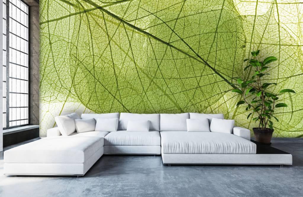 Bladeren - Groene bladeren - Slaapkamer 4