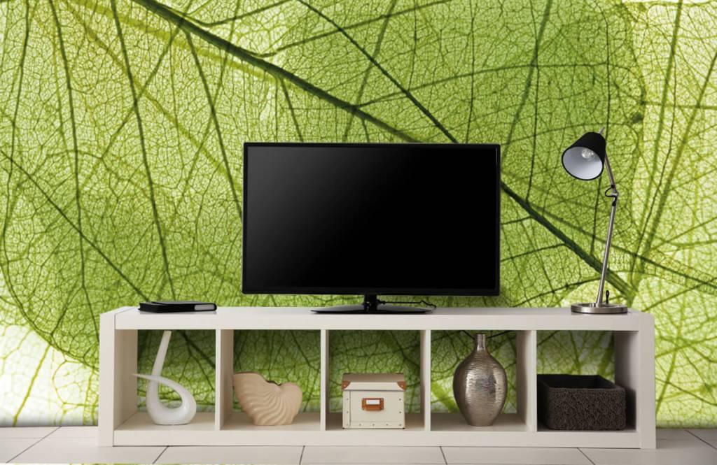 Bladeren - Groene bladeren - Slaapkamer 6