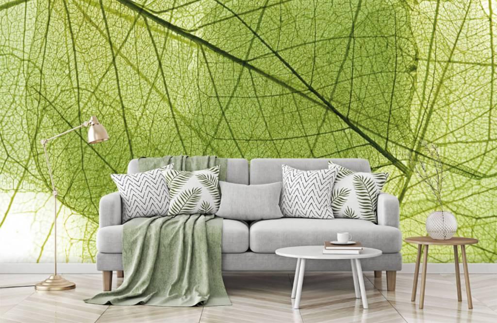 Bladeren - Groene bladeren - Slaapkamer 8